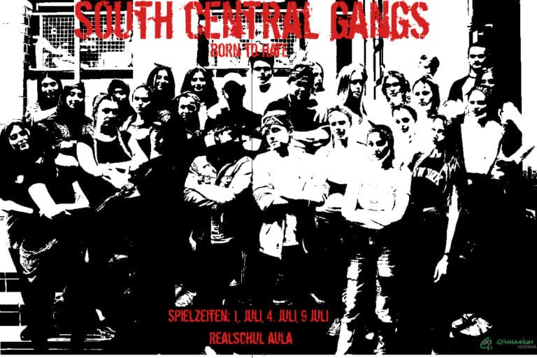 South Central Gangs - Literaturkurs